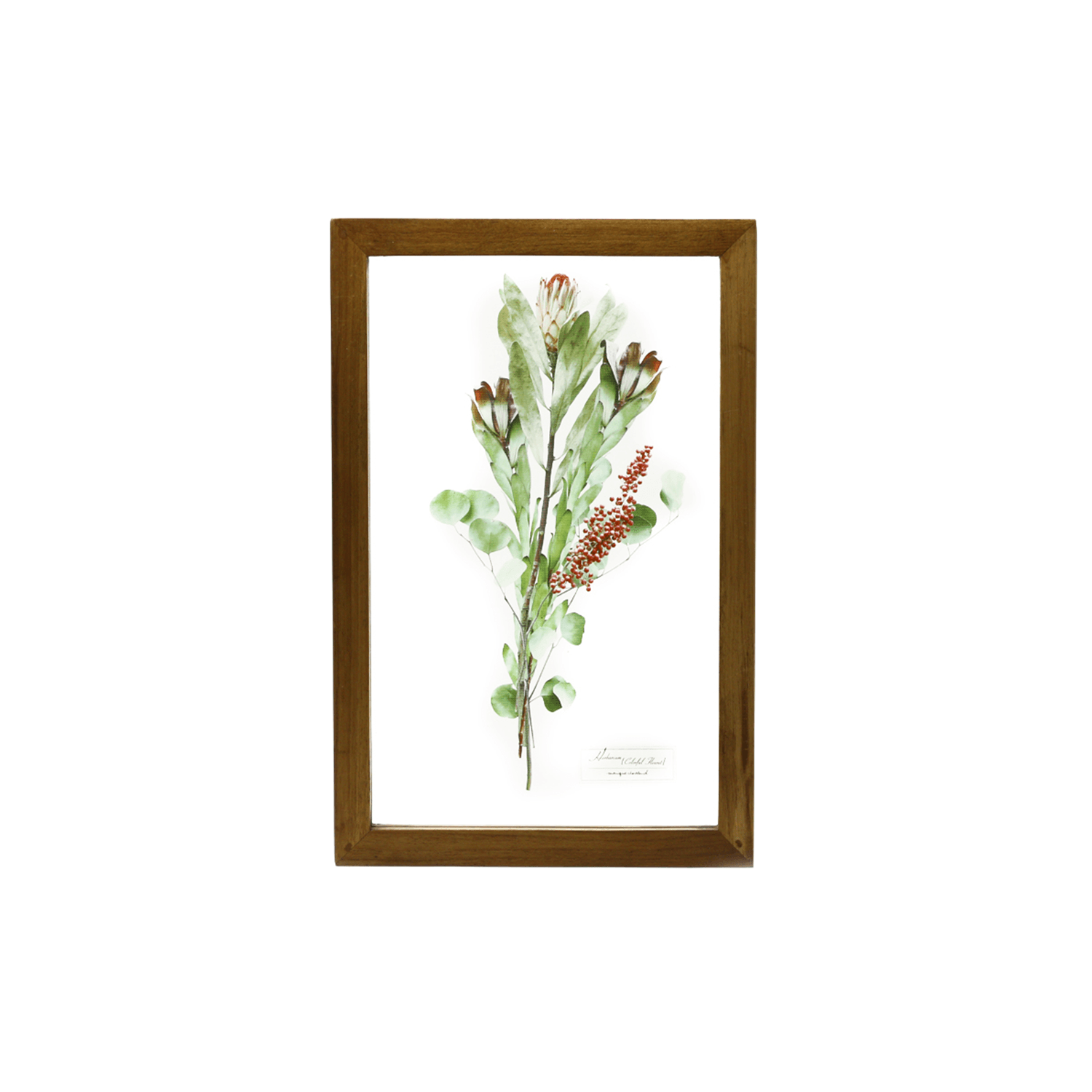 Glass Frame Flower/Pink